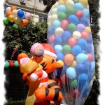 DUC-7 Filede Uçan Balon