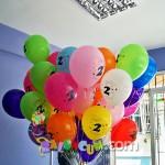 DGUC-5 Doğum Günü Uçan Balon Demeti