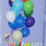 DGUC-11 Doğum Günü Uçan Balon Demeti
