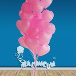 SVG4 Sevgi Mesajlı Uçan Balon