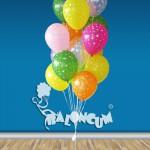 DGUC-24 Doğum Günü Uçan Balon Demeti