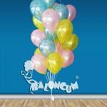 DGUC-25 Doğum Günü Uçan Balon Demeti