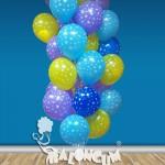 DGUC-27 Doğum Günü Uçan Balon Demeti